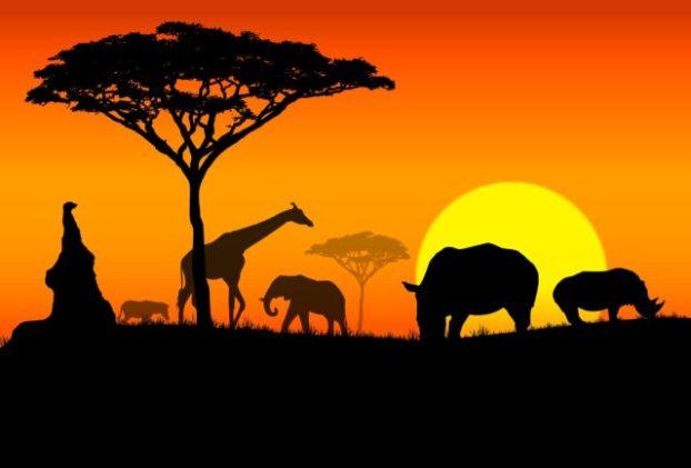 africa-2-640x434